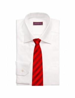 Модный галстук SE